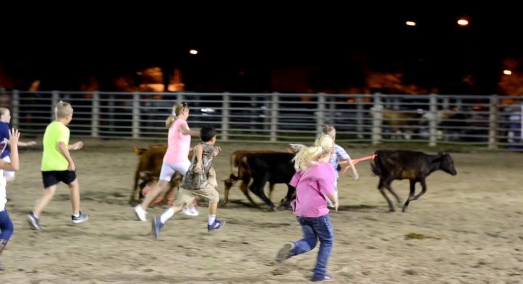 suhls rodeo kids chasing calves