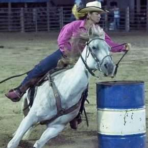 suhls rodeo pink shirt barrel racer